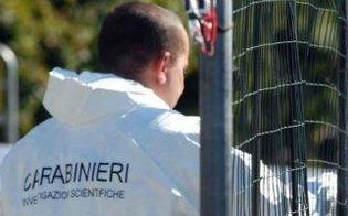 http://www.seguonews.it/condannate-i-due-amanti-di-gela-ma-non-volevano-uccidere