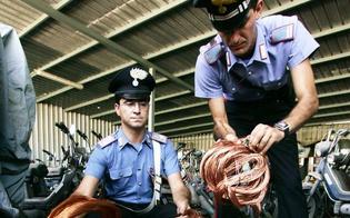 http://www.seguonews.it/arrestati-a-san-cataldo-i-predatori-del-rame-romeni-tentano-furto-sulla-linea-ferrata