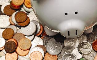 http://www.seguonews.it/raccolta-fondi-salva-nissa-un-pool-di-notai-per-le-donazioni