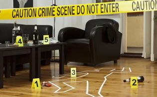 https://www.seguonews.it/master-universitario-in-criminologia-unallieva-nissena-racconta-lesperienza
