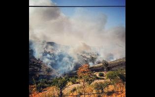 http://www.seguonews.it/dieci-ore-di-paura-a-san-cataldo-per-un-incendio-esploso-vicino-le-case-canadair-in-azione