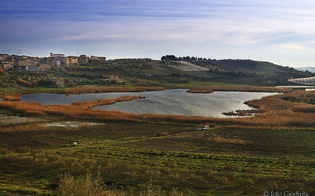http://www.seguonews.it/lago-soprano-di-serradifalco-legambiente-denuncia-dopo-un-anno-ancora-degrado-ambientale