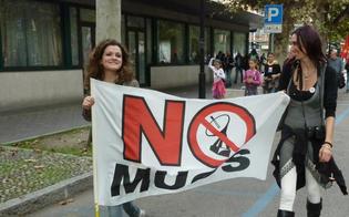 https://www.seguonews.it/no-al-muos-a-niscemi-manifestazione-davanti-al-cga-di-palermo-attivisti-in-attesa-della-sentenza