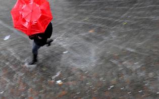 http://www.seguonews.it/allarme-meteo-dirigenti-presi-dal-caos-il-sindaco-ci-ha-scaricato-la-responsabilita