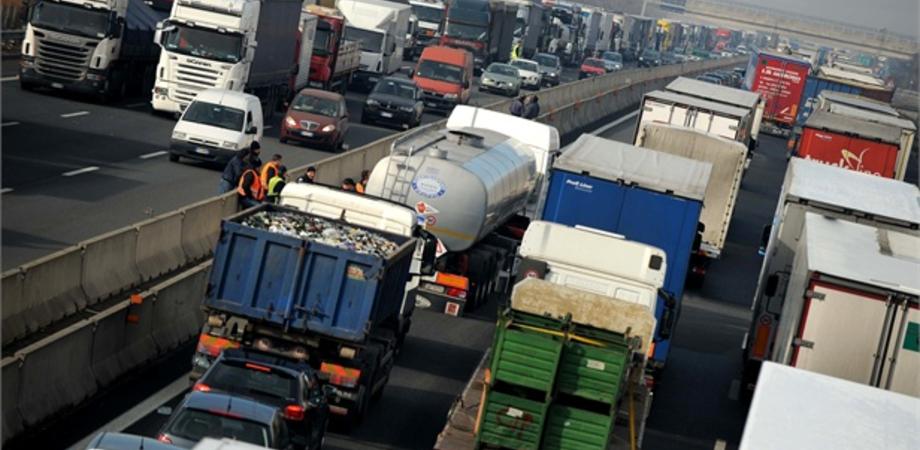 """Riecco """"bisonte selvaggio"""" in Sicilia: sciopero autotrasporti dal 5 a 11 agosto"""