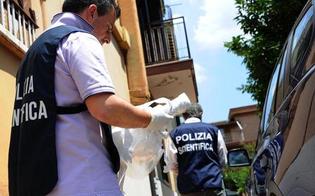 http://www.seguonews.it/topo-dappartamento-a-caltanissetta-tradito-dalle-impronte-in-sette-mesi-la-polizia-ha-risolto-decine-di-casi