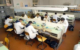 http://www.seguonews.it/nuove-professioni-la-provincia-finanzia-un-laboratorio-odontotecnico-allistituto-galilei