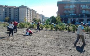 http://www.seguonews.it/san-luca-oggi-e-domenica-passeggiata-ecologica-e-ortoterapia-con-i-bambini