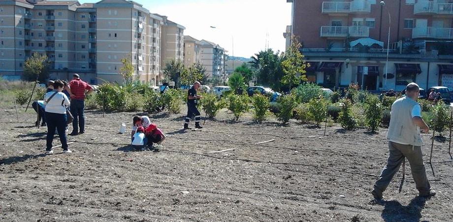 San Luca: oggi e domenica passeggiata ecologica e ortoterapia con i bambini