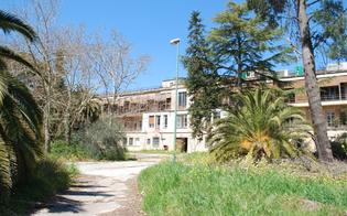 http://www.seguonews.it/caltanissetta-parco-dubini-accesso-negato-ad-una-mamma-in-compagnia-del-figlio-sul-passeggino