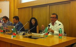 http://www.seguonews.it/centri-storici-e-territori-urbani-domenica-convegno-regionale-di-green-italia-a-caltanissetta