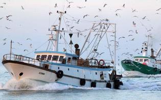 http://www.seguonews.it/peschereccio-portoghese-alla-deriva-a-sud-di-gela-soccorso-salvi-i-12-membri-dellequipaggio