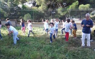 http://www.seguonews.it/orti-in-condotta-nelle-scuole-l11-novembre-a-caltanissetta-riparte-la-campagna-di-slow-food