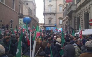 http://www.seguonews.it/forza-italia-pdl-caltanissetta-manifesta-il-sostegno-a-silvio-berlusconi-aggiornamenti-in-diretta-da-roma