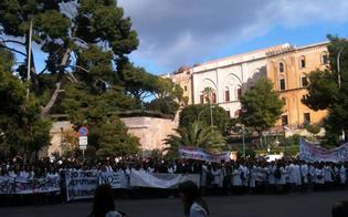http://www.seguonews.it/giovani-camici-bianchi-protestano-a-palermo-contro-riforma-sanitaria-riduce-i-posti-nelle-scuole-di-specializzazione