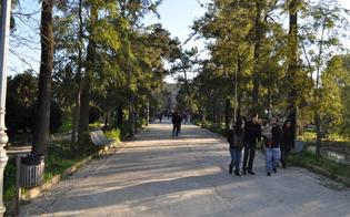 http://www.seguonews.it/citta-green-caltanissetta-maglia-nera-listat-aree-verdi-sotto-il-minimo-di-legge
