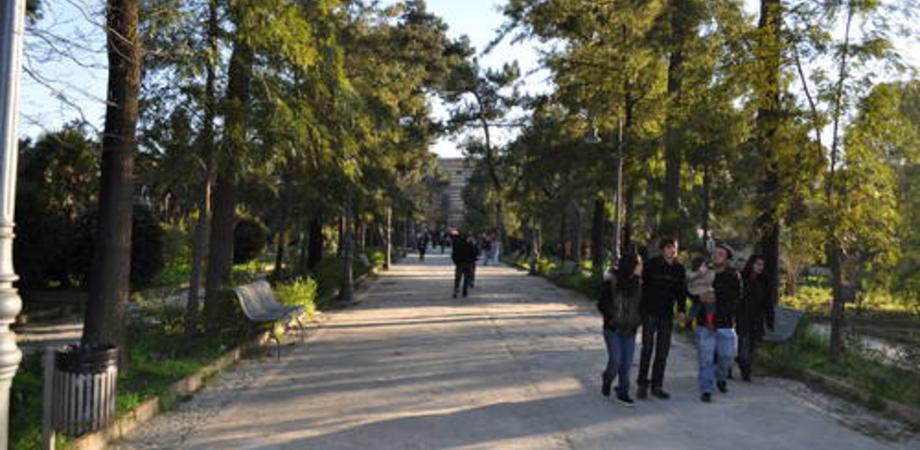 Città green, Caltanissetta maglia nera. L'Istat: aree verdi sotto il minimo di legge