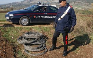 https://www.seguonews.it/furto-di-cavi-elettrici-e-niscemi-resta-a-secco-ma-caltaqua-gestisce-lemergenza