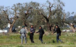 http://www.seguonews.it/fuggono-durante-trasferimento-in-bus-decine-di-immigrati-ricercati-a-gela