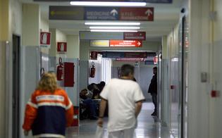 Febbre suina, una decina di casi tra Agrigento e Canicattì: pazienti trasferiti tra Caltanissetta e Palermo