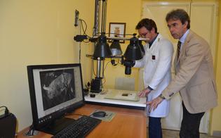 http://www.seguonews.it/scoperto-topo-dappartamento-in-trasferta-a-caltanissetta-la-polizia-scientifica-lo-incastra-grazie-alle-impronte