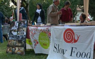 http://www.seguonews.it/slow-food-caltanissetta-di-terra-e-cibo-il-14-aprile-si-presenta-il-libro-di-vullo