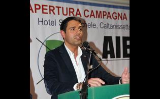Elezioni, vince l'astensionismo. Altolà di Aiello (Fi):