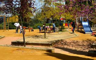http://www.seguonews.it/parco-robinson-appena-aperto-e-gia-primo-raid-ladro-ripreso-dalle-telecamere