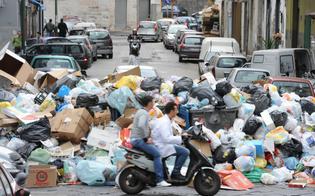 http://www.seguonews.it/balzello-rifiuti-indagine-federconsumatori-a-caltanissetta-la-tari-meno-bassa-con-288-euro