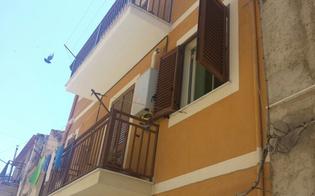 http://www.seguonews.it/pulisce-le-tapparelle-e-precipita-dalla-finestra-grave-casalinga-di-riesi