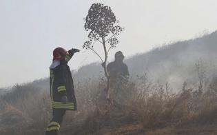 https://www.seguonews.it/segnalate-erbacce-a-terrapelata-la-protezione-civile-e-gia-operativa-per-la-campagna-antincendio