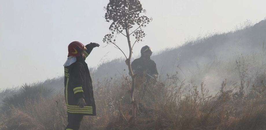 Segnalate erbacce a Terrapelata: la Protezione Civile è già operativa per la campagna antincendio