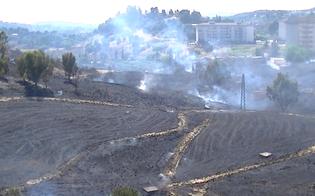 http://www.seguonews.it/paura-quartiere-san-luca-per-vasto-rogo-case-minacciate-dal-fuoco-residenti-sfollati