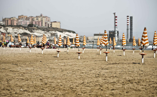 http://www.seguonews.it/coste-siciliane-divorate-dal-cemento-denuncia-del-wwf-contro-mattone-selvaggio