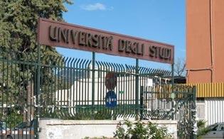 http://www.seguonews.it/laltra-faccia-della-sicilia-testimone-di-giustizia-sotto-protezione-si-laurea-in-videoconferenza-a-palermo