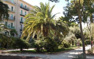 http://www.seguonews.it/caltanissetta-un-lettore-denuncia-a-villa-amedeo-strutture-per-i-bimbi-non-adeguate-e-pericolose