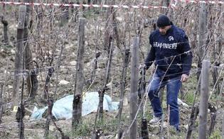https://www.seguonews.it/tragedia-nelle-campagne-di-riesi-cade-dallalbero-di-olive-morto-agricoltore-di-63-anni