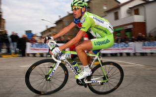 http://www.seguonews.it/sport-solidale-niscemi-allasta-per-ricerca-sneakers-campione-nibali