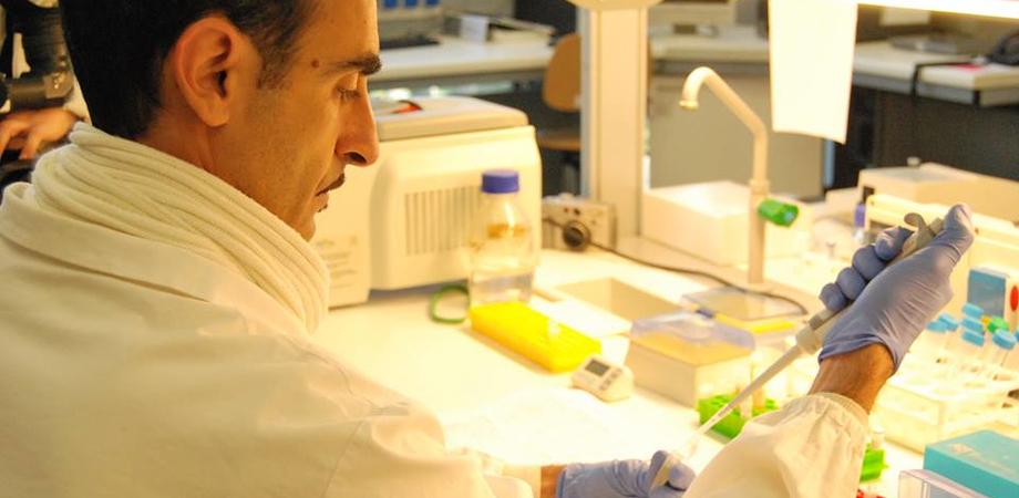 Coronavirus, la variante inglese sta mutando: primi casi di reinfezione, più contagiosa e letale