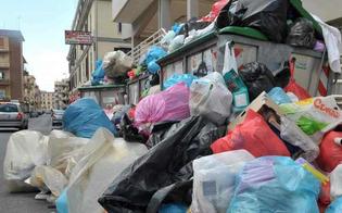http://www.seguonews.it/san-cataldo-invasa-dai-rifiuti-il-m5s-bisogna-avviare-tutte-le-misure-necessarie-per-ripulire-la-citta