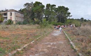 http://www.seguonews.it/verde-urbano-pd-propone-idee-low-cost-potenziare-spazi-gia-esistenti-enti-coinvolgere