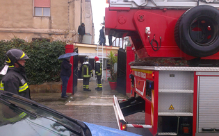 https://www.seguonews.it/porta-segni-scasso-quel-trambusto-allalba-polizia-passa-raggi-x-casa-vedova