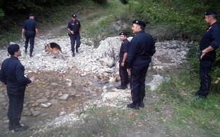 https://www.seguonews.it/dove-finiti-in-provincia-caltanissetta-scomparse-124-negli-ultimi-40-anni