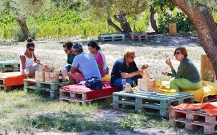 http://www.seguonews.it/calici-di-stelle-il-10-agosto-cantine-aperte-in-sicilia-tutti-gli-appuntamenti