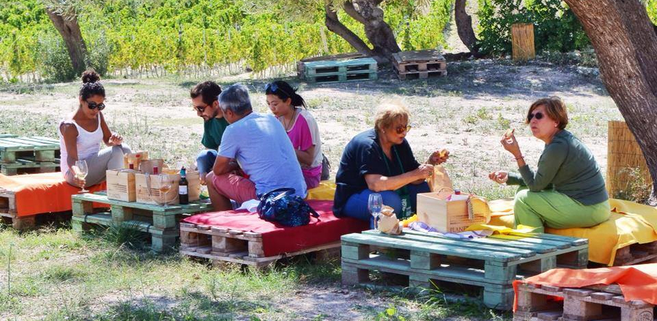 """""""Calici di Stelle"""", il 10 agosto cantine aperte in Sicilia. Tutti gli appuntamenti"""
