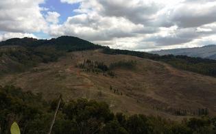 http://www.seguonews.it/san-cataldo-martedi-la-presentazione-dei-lavori-al-parco-minerario-di-gabbara
