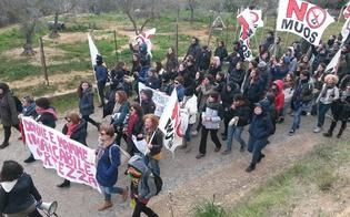 https://www.seguonews.it/fuori-gli-americani-niscemi-protesta-incidenti-tutto-pronto-per-mobilitazione-nazionale-4-aprile