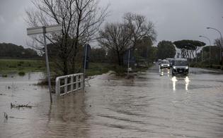 http://www.seguonews.it/lallerta-meteo-in-sicilia-gli-esperti-in-poche-ore-pioggia-di-3-mesi-la-fascia-orientale-tra-le-piu-flagellate-dal-maltempo