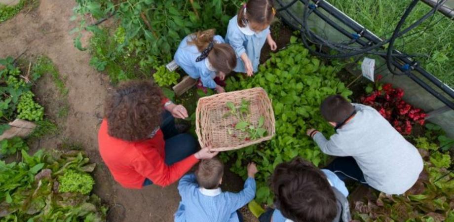 """Un orto sul tetto della scuola """"Pietro Leone"""", sabato si presenta """"Cibo dal cielo"""". Atteso il sottosegretario all'Istruzione Faraone"""