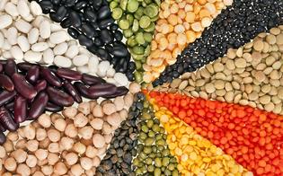 http://www.seguonews.it/la-nutrizionista-invita-a-valorizzare-i-legumi-sono-la-carne-dei-furbi